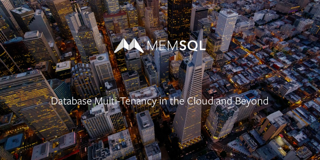 Database Multi-Tenancy in the Cloud and Beyond